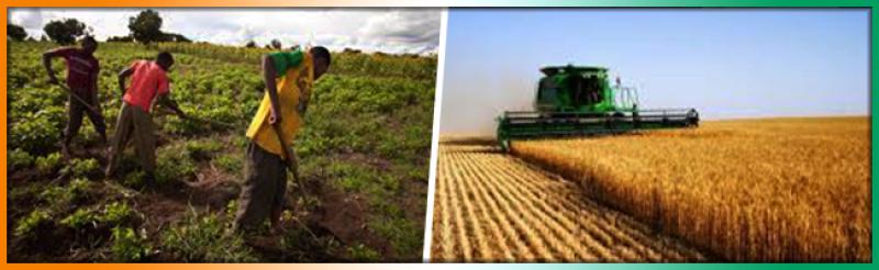 Cote d'Ivoire Agriculture - AgriSmart, Inc. Côte d'Ivoire